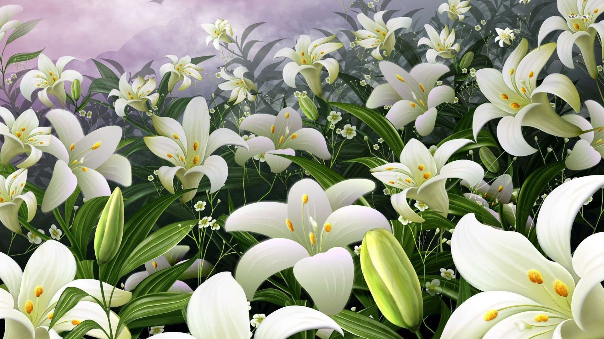 Parted To Meet Again White Lilies